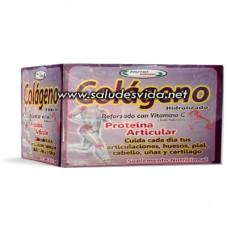 Colágeno Idrolizádo Con  Vitamina C